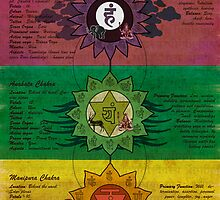 The System of Chakras by satyakam