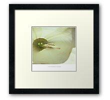 PANTONE #5875 Framed Print
