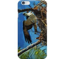 Osprey St George Island Florida Abstract Impressionism iPhone Case/Skin