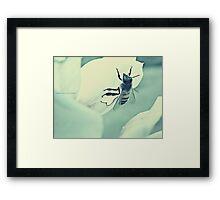 PANTONE - BEE #443 Framed Print