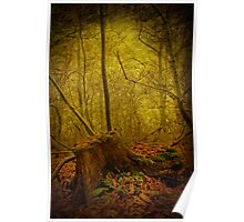 Tree Stump Poster