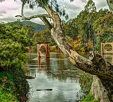 A River Runs Through It - Upper Murray River - Jingelic NSW - THe HDR Experience by Philip Johnson