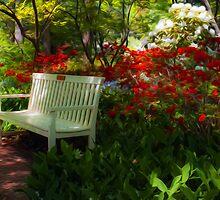 Garden Bench by Michael Shake