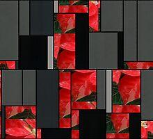 Mottled Red Poinsettia 1 Ephemeral Art Rectangles 7 by Christopher Johnson