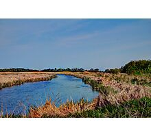 Spring Day at the Marsh  Photographic Print