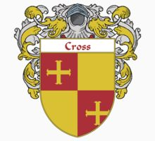 Cross Coat of Arms/Family Crest by William Martin