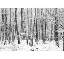 Soldiers in the Snow Photographic Print