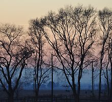 Country Winter Evening by CADavis