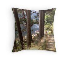 Summer Woodland, Glendalough, Ireland Throw Pillow
