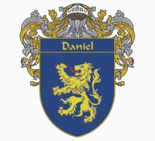 Daniel Coat of Arms/Family Crest by William Martin