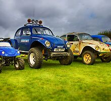 Off Road VW Beetle Style by jay007