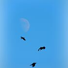 Three Crows and the Blossoming Moon by TrendleEllwood
