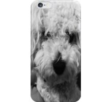 dog iPhone Case/Skin