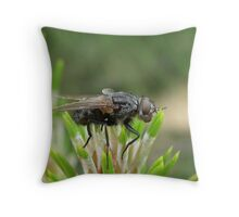 Profiling a Fly Throw Pillow