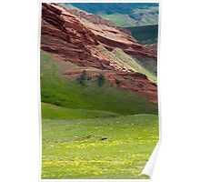Wildflowers Along Chief Joseph Highway Poster
