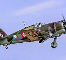 Curtiss Hawk H75C-1 No 82 G-CCVH by Colin Smedley
