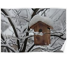Snow Covered Birdhouse Poster