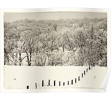 fence line, Clarke County Virginia Poster