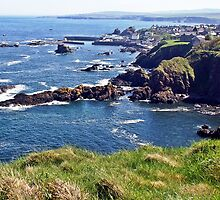 St. Abbs from the cliffs by Escocia Photography