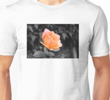 Passion Peach Unisex T-Shirt
