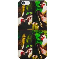 Brown poultry iPhone Case/Skin