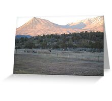 Front Yard Western Slope View  Greeting Card
