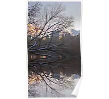 Central Park Reflection Poster