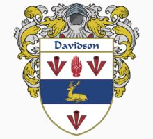 Davidson Coat of Arms/Family Crest by William Martin