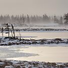 Frozen Landscape in Churchill, Manitoba by cavaroc