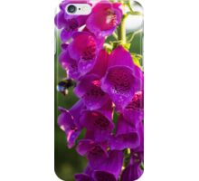 The Bee and the Foxglove iPhone Case/Skin