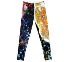 Pederson Cleaner Shrimp Leggings