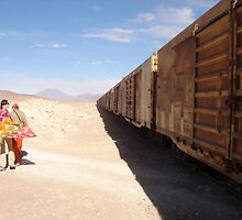 Desert train by Pamnani  Photography