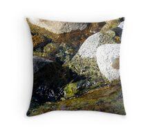 Single Leaf Throw Pillow