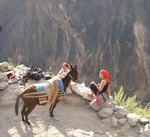 Donkey kong by Pamnani  Photography