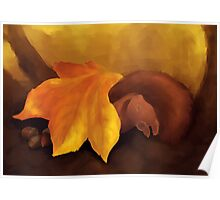 Sleeping Squirrel Poster