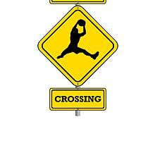 Basketball Rebound Crossing by kwg2200