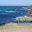 Empty bench at Forster, New South Wales by LifeisDelicious