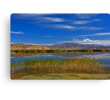 Koktokay Lake Canvas Print