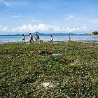 Children At Work, Northern Palawan by Paul Weston
