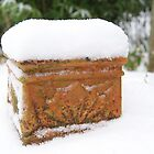 Snow Pot  by KirstyJSwinger