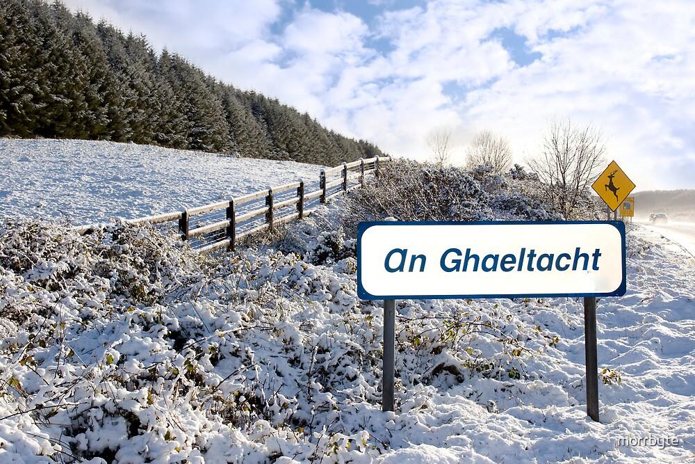 an ghaeltacht sign in irish snow scene by morrbyte
