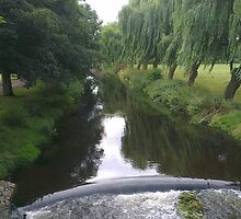 Tree Lined River  by KirstyJSwinger