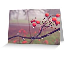Autumn Berries In The Fog 2 Greeting Card