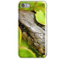 Garter Snake iPhone Case/Skin