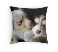 Adorable Australian Shepherd Puppies Throw Pillow