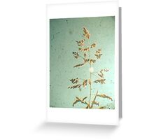 The Light of Day Greeting Card