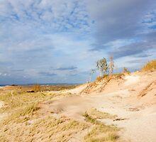 Sleeping Bear Dunes - Glen Arbor, Michigan by Jamie Kirschner