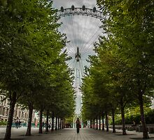 London Eye  by DavePrice
