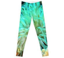 Giant Green Sea Anemone Leggings