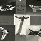 USAF Northrop Planes by John Schneider
